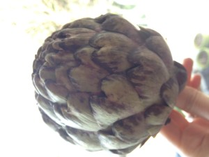 artichoke detox cleanse natural health
