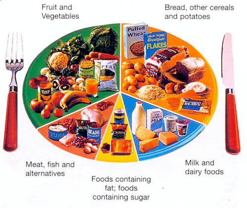 best diet plan, food choices, nutrition, healthy food, Traditional Chinese Medicine