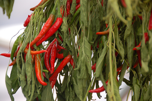 food craving, nutrition, spicy food